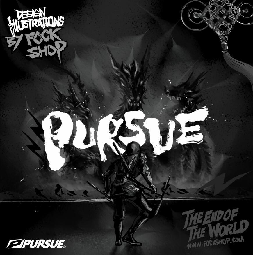 PURSUE2