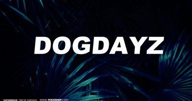 DOG DAYZ 10